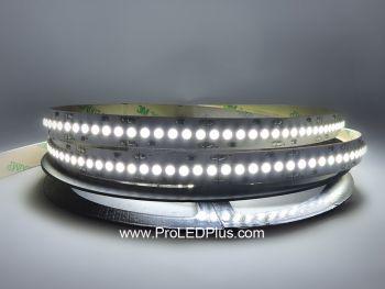240/m 3528 LED Strip Light, 24V, 5m