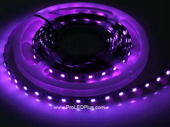 380-385nm Ultraviolet 5050 LED strip BlackLight Strip, 60/m, 5m