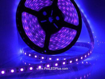 395-400nm Ultraviolet 5050 LED strip BlackLight Strip, 60/m, 5m