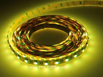 4-in-1 RGBW 5050 LED Strip, 60/m, 12/24V, 5m
