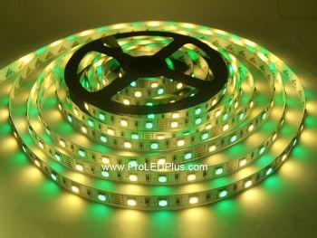 RGB + Warm White 5050 LED Strip Light, 60/m, 12/24V, 5m