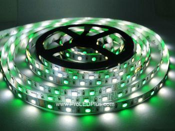 RGB + White 5050 LED Strip Light, 60/m, 12/24V, 5m