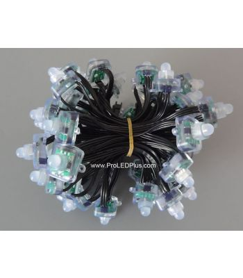 12mm DC12V WS2811 Diffused FLat Digital RGB LED Pixels, 100/strand, 20AWG Black Wire, IP68