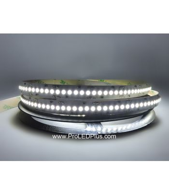 240/m 3528 LED Strip Light, 24V, 5m