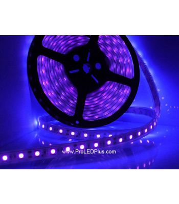 395-400nm Ultraviolet 5050 LED strip BlackLight Strip, 60/m, 5m