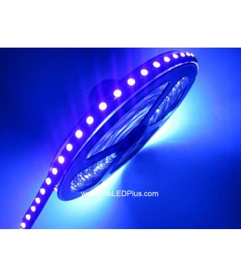 400-405nm Ultraviolet 5050 LED strip BlackLight Strip, 60/m, 5m