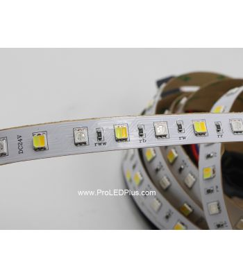 RGB+Tunable White LED Strip, 72/m, 24V, 5m