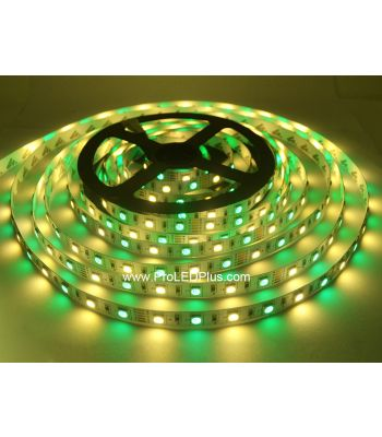 RGB + Warm White 5050 LED Strip Light, 60/m, 12/24V, 5m