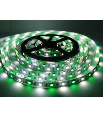 RGB + White 5050 LED Strip Light, 60/m, 12/24V, 5m