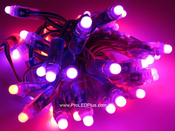 Rgb Led Christmas Lights.12mm Dc5v Ws2811 Diffused Thin Digital Rgb Led Pixels 50 Strand Ip68